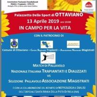 Match di pallavolo – palazzetto dello sport di  Ottaviano 13 Aprile